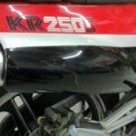 Kawasaki KR250S Restoration - image 13